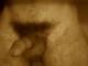 romasanta Profile Photo